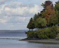 De bezinning van dalingsbomen in meer Royalty-vrije Stock Fotografie