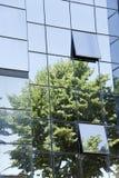 De bezinning van de boom in het glaspaleis stock fotografie