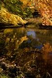 De Bezinning van de herfst Royalty-vrije Stock Fotografie