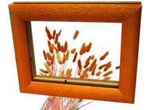De bezinning van de spiegel. Stock Afbeelding