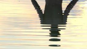 De bezinning van een Jonge Mens wordt gezien in Meerwateren bij een Schitterende Zonsondergang stock videobeelden