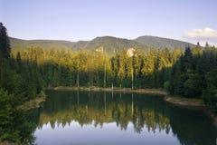 De bezinning van het meer van een bos bij zonsondergang Royalty-vrije Stock Fotografie