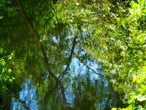 De bezinning van het water Royalty-vrije Stock Afbeeldingen