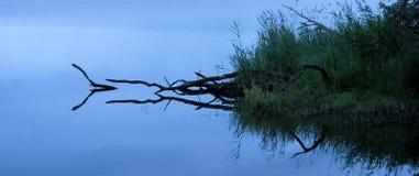 De bezinning van het water in de ochtend (panorama) Royalty-vrije Stock Fotografie