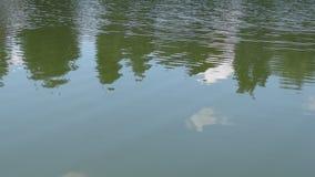 De bezinning van het watermeer van bomen en wolken met rimpelingen stock footage