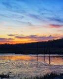 De bezinning van de moeraszonsondergang stock fotografie