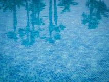 De bezinning van zwembadpalmen Royalty-vrije Stock Afbeeldingen