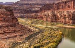De Bezinningen van Colorado Goosneck in de Herfst Stock Afbeelding