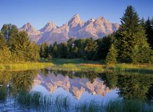 De Bezinningen van de Berg van de ochtend stock foto