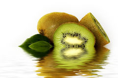 De bezinningen van de kiwi Royalty-vrije Stock Foto's