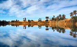 De bezinningen van de oase Stock Foto's