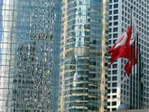 De bezinningen van de vlag Stock Foto