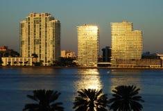 De Bezinningen van Miami Stock Afbeelding