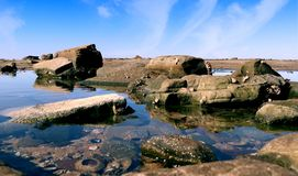 De bezinningen van rotspoolswith over de centrale kust van Nieuw Zuid-Wales Australië royalty-vrije stock foto