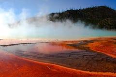 De Bezinningen van Yellowstone Stock Fotografie