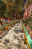 De bezoekers beklimmen de steile trap Stock Afbeelding