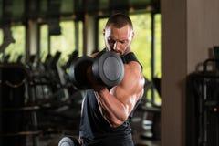 De Bicepsen van de de Mensenoefening van de geschiktheidsspier met Domoren Royalty-vrije Stock Afbeelding