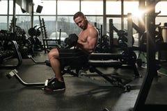 De Bicepsen van de jonge Mensenoefening met Domoren Stock Afbeelding