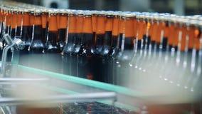 De bierflessen van glas worden gemaakt dat worden opnieuw gevestigd stock video