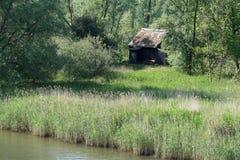 De Biesbosch National Park, Royalty Free Stock Photography