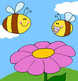 De bij die van de moeder met babybij vliegt over bloem Royalty-vrije Stock Afbeelding