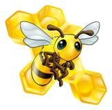 De bij van het beeldverhaal met honingraat vector illustratie