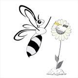De bij verheugt zich voor een bloem Stock Foto