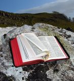 De bijbel Stock Afbeelding