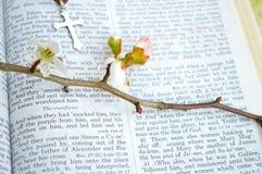 De Bijbel en het kruis van Pasen stock afbeeldingen