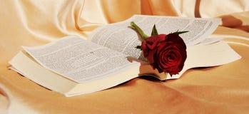 De Bijbel en het lijden Stock Foto