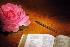 De bijbel, pen, & nam toe stock afbeeldingen