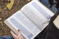 De Bijbel van de lezing stock afbeeldingen