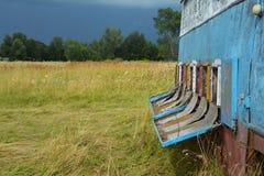 De bijen keren huis vóór regen terug De bijen verbergen fundamenteel uit in de bijenkorf wanneer het hard regent royalty-vrije stock foto's