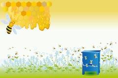 De bijen verzamelen honing Vector Illustratie