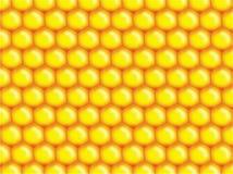 De bijenachtergrond van de honing Royalty-vrije Stock Afbeelding