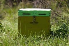 De bijenkorf van bijen Royalty-vrije Stock Fotografie