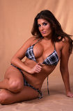 De bikini van de plaid Stock Foto's