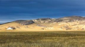 De binnen weide van Mongolië Royalty-vrije Stock Foto's