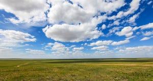 De binnen weide van Mongolië Stock Foto