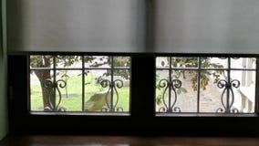 De binnenkant van de venstermening - buiten de windslagen stock footage