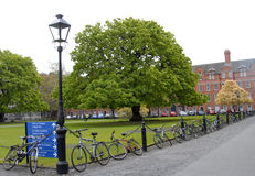 De binnenplaats van Dublin University De Vierling Stock Foto