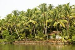 De Binnenwateren van Kerala, India Stock Fotografie