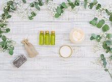De biologische producten van de huidzorg Stock Foto's