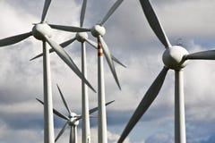 De bladen van de wind Stock Foto's