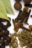De bladeren, de kruidnagels en de zwarte peper van de baai Royalty-vrije Stock Afbeelding