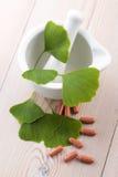 De bladeren en de pillen van Ginkgobiloba stock fotografie