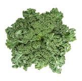 De bladeren van de boerenkoolkool Groen plantaardig Gezond het eten Super voedsel stock fotografie