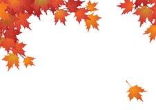 De bladeren van de achtergrond herfst frame Stock Afbeelding