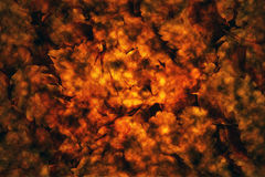 De bladeren van de achtergrond herfst textuur stock fotografie