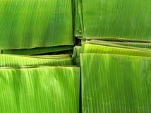 De bladeren van de banaan Stock Foto